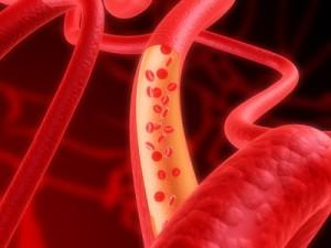 arterie mit flieendem blut