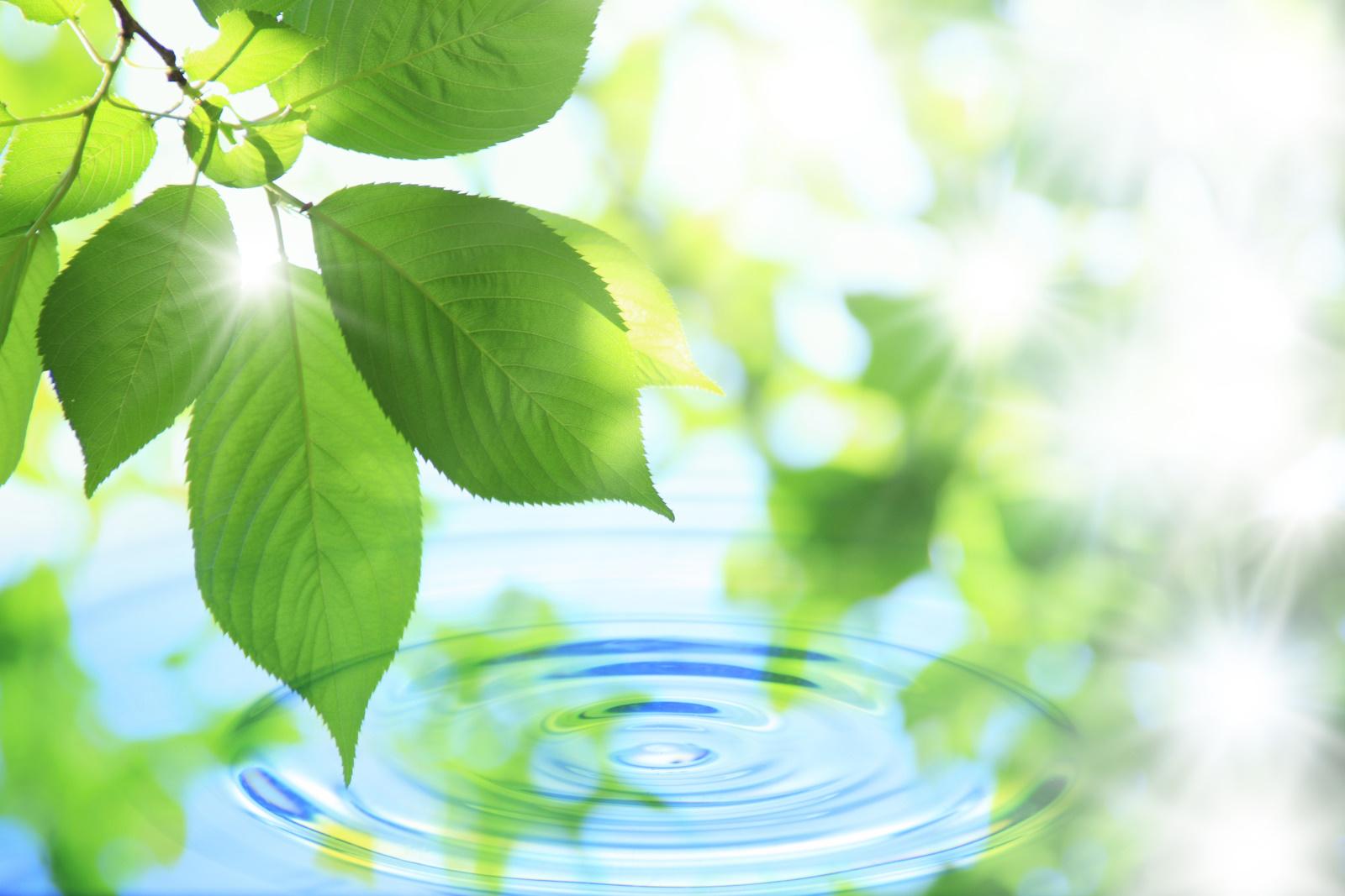 株式会社日本環境科学